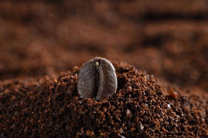 Перемолотые зерна