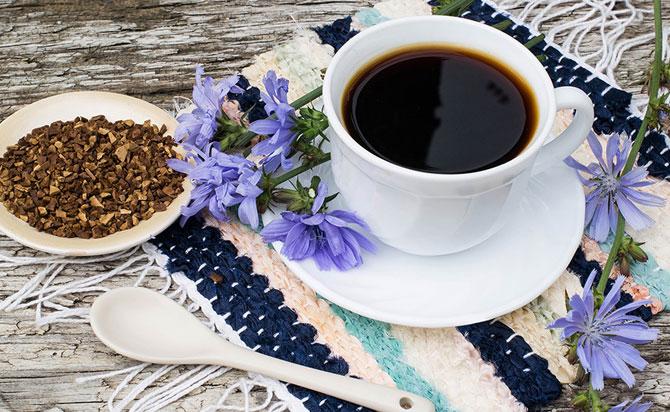 Цикорий похож на кофе