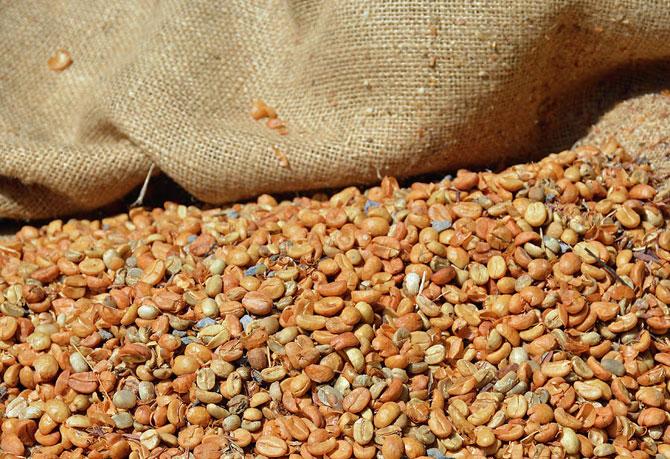 Очищенные зерна