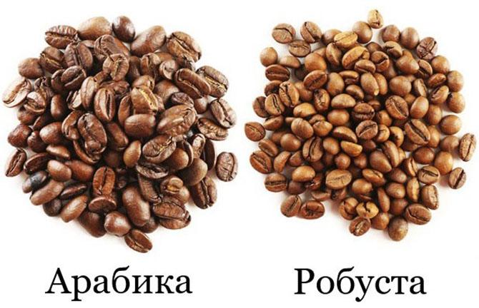 Зерна разной формы