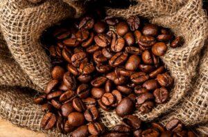 свежие кофейные зерна необжаренные